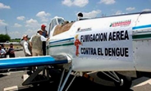 Oran Argentina - Pragas e Eventos