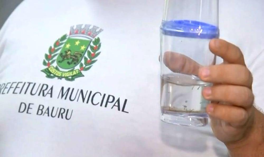 Bauru registra mais de 12 mil casos de dengue e lidera ranking nacional, aponta Ministério da Saúde