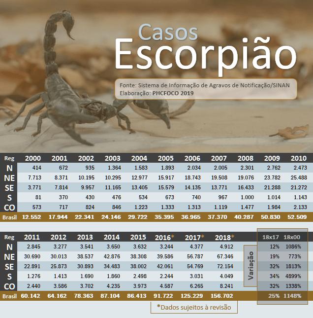 especialista-do-vital-brazil-fala-sobre-o-aumento-da-incidencia-de-acidentes-com-escorpioes-no-pais